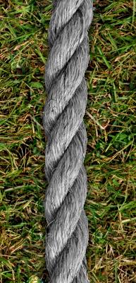 Cuerda de ceniza